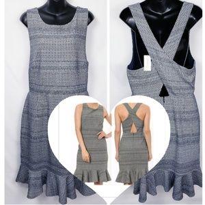 Banana Republic Navy & White Knit Sheath Dress